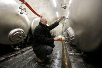 In this photo taken Wednesday, March 18, 2015, Director of Cvikov Brewery Viktor Tkadlec pours glasses of beer in its cellar in Cvikov, Czech Republic. (AP Photo/Petr David Josek).